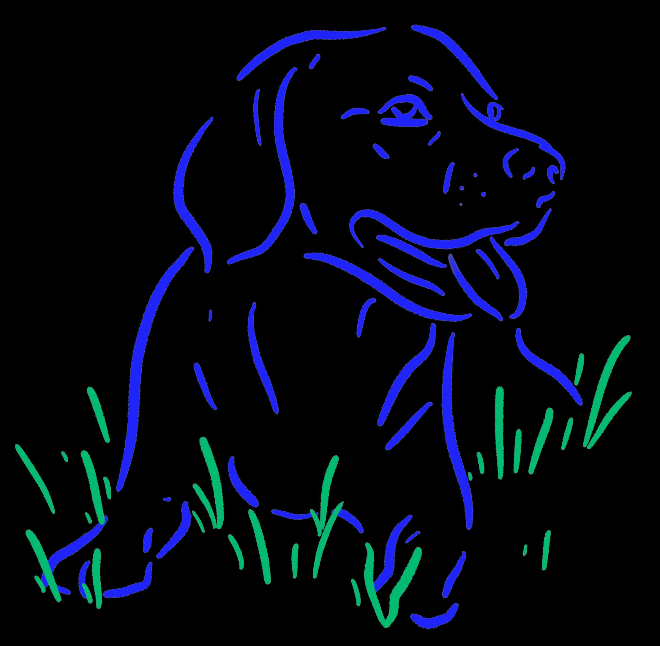 Illustration of a dog