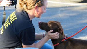 A rescued dog is greeted before transport
