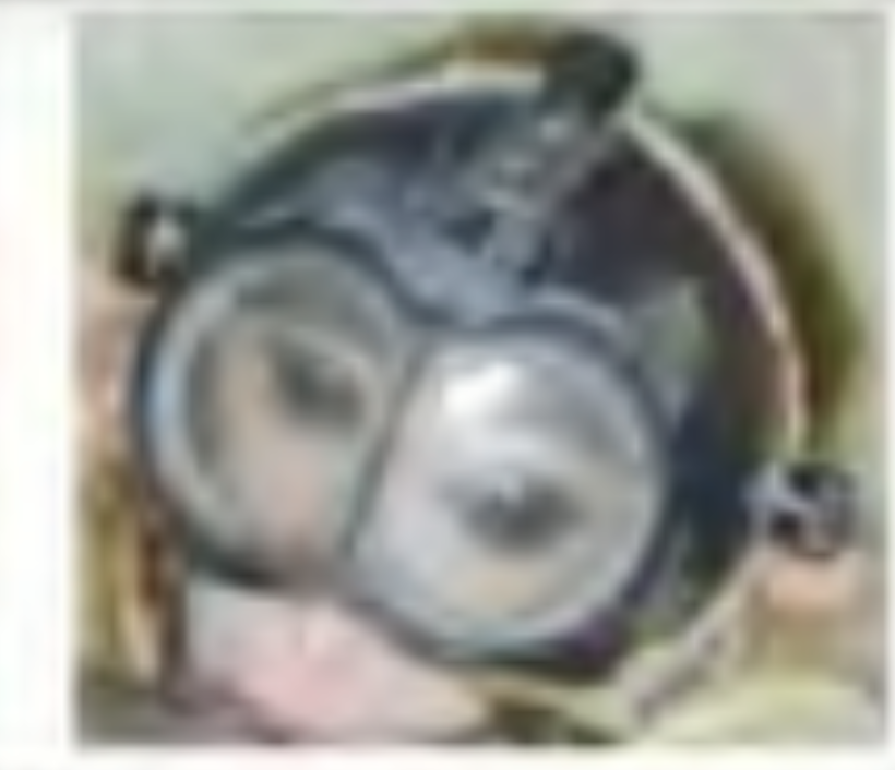 A blurry image uncovered by Rise for Animals shows a baby monkey trapped in a helmet that forever damages his vision