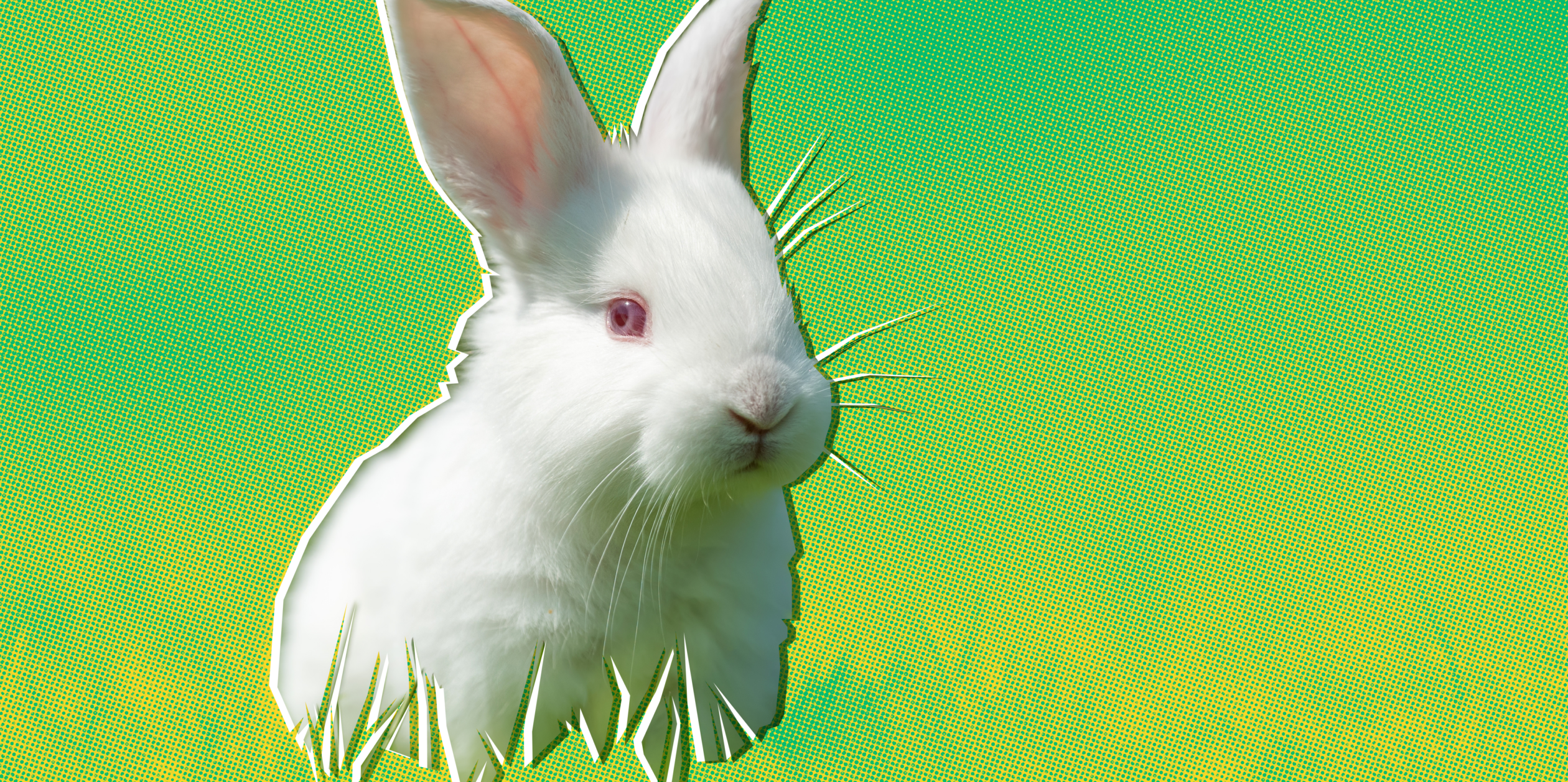 A white rabbit is displayed against a stylized green and yellow background