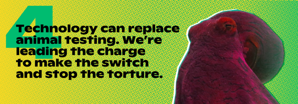 Technology can replace animal testing. We're leading the charge to make the switch and stop the torture.