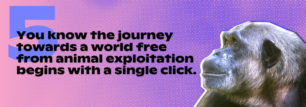 5. You know the journey towards a world free from animal exploitation begins with a single click.