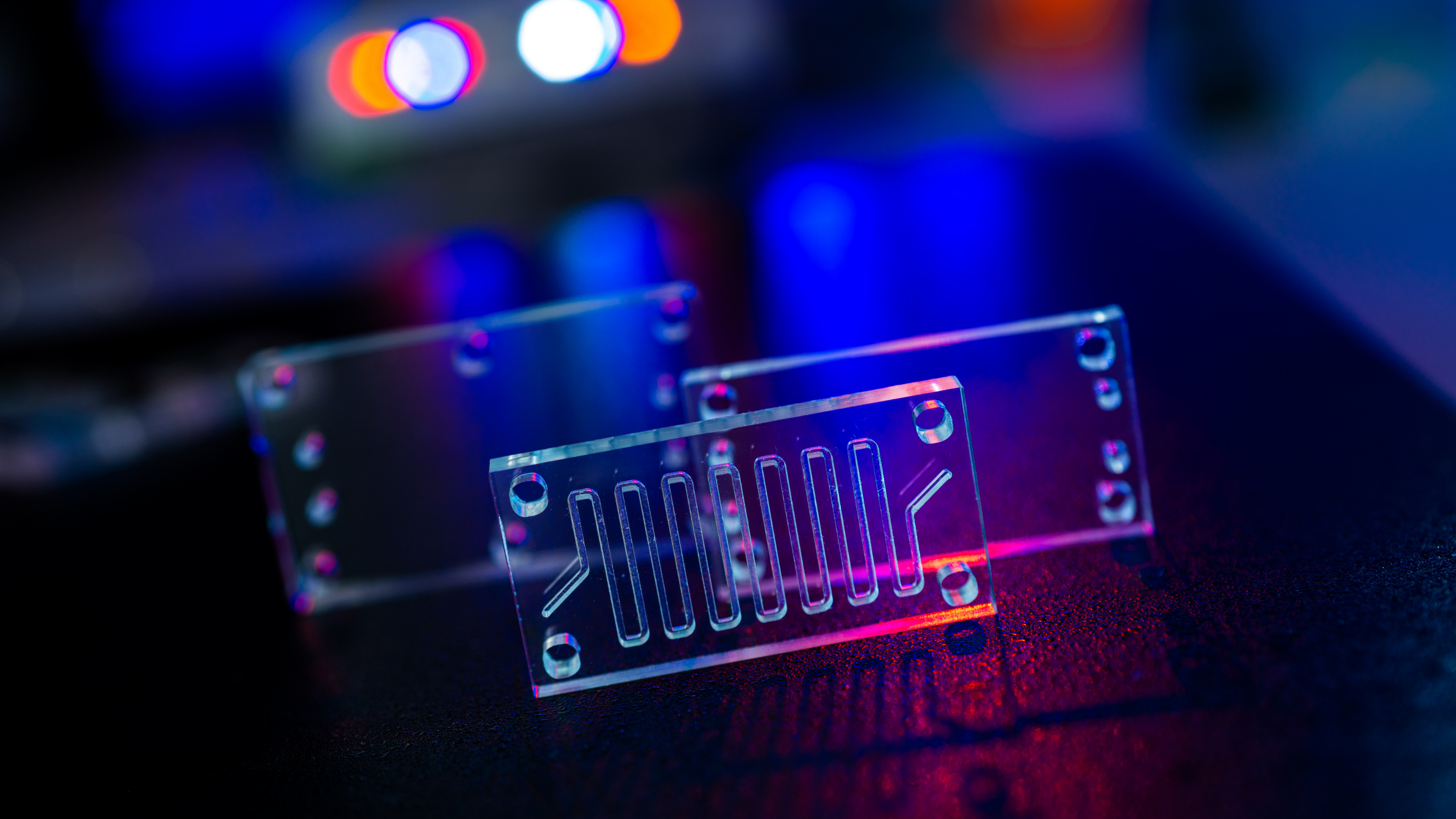 Photo of an organ-on-a-chip, a microfluidic device chip that simulates a human organ