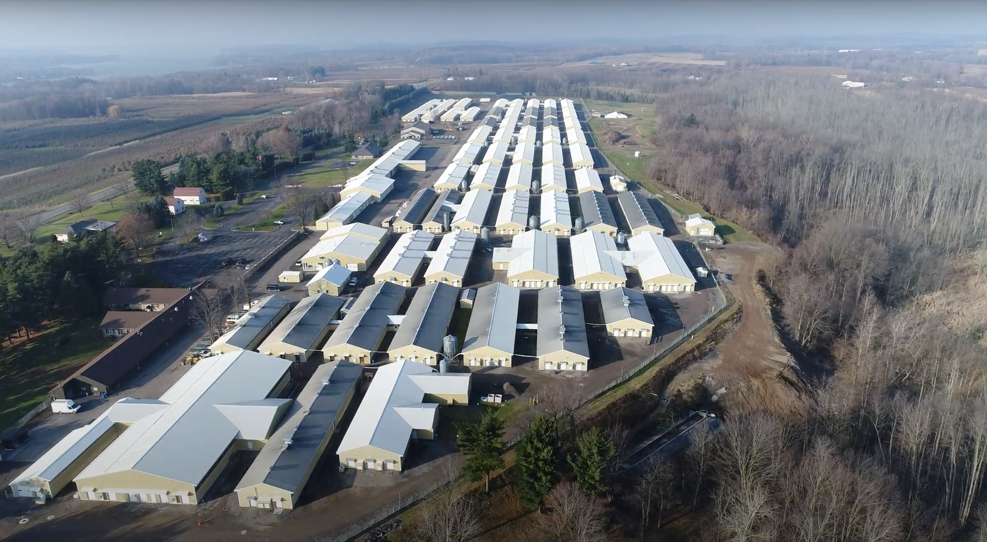 An aerial view of Marshall BioResources, where dozens of massive sheds are lined up on a sprawling property in updates New York