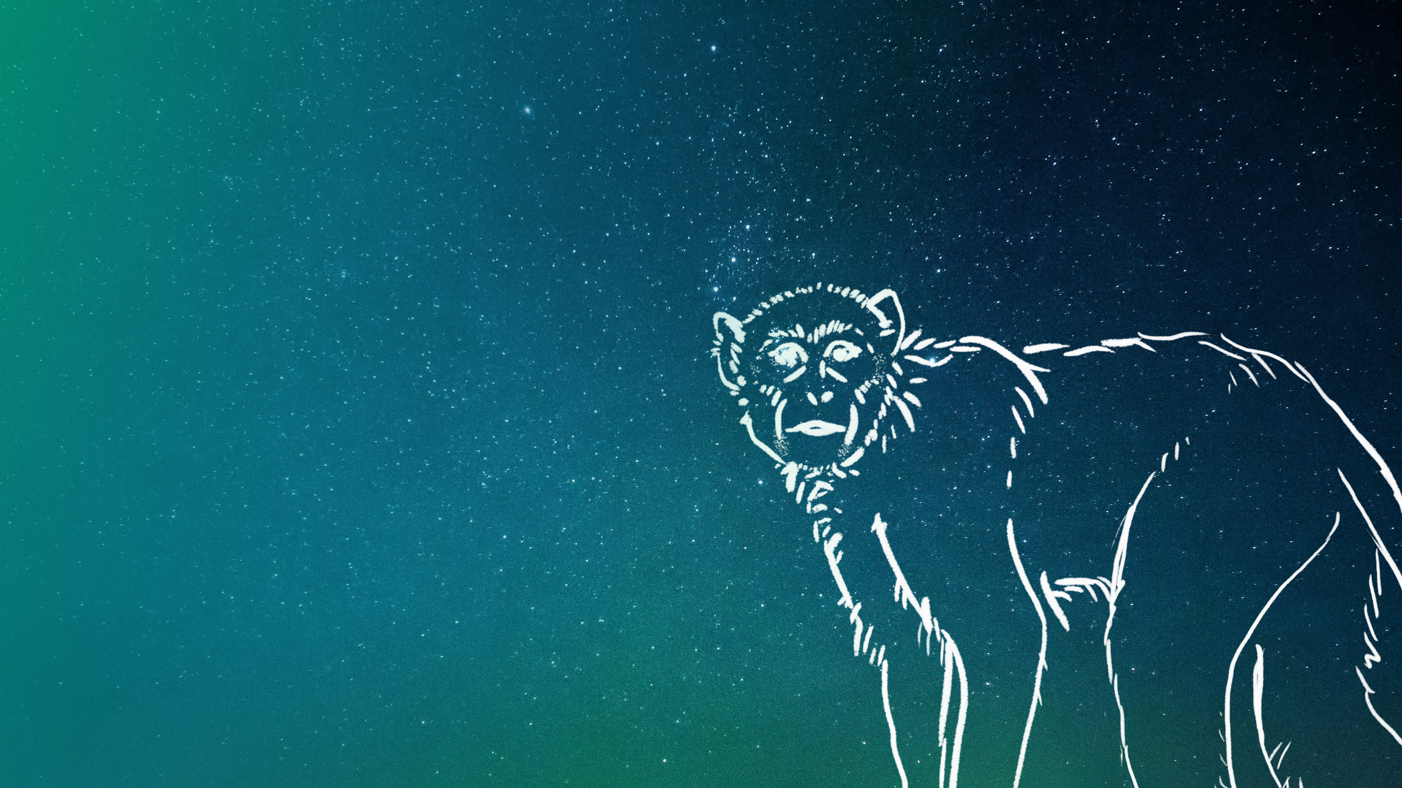 Image: A loose sketch of a monkey over a blue-green starry sky